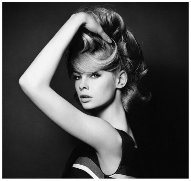 Stardust: Foto di David Bailey